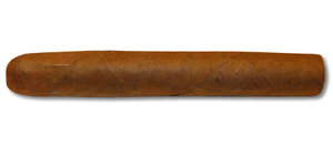 Dutch Cigars -  Long Coronas - 1 Single